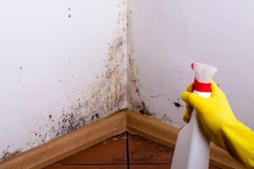 Paredes con manchas: desengrasante para limpiar manchas