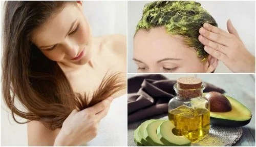 Cómo usar el aguacate para restaurar el cabello dañado — Mejor con ...