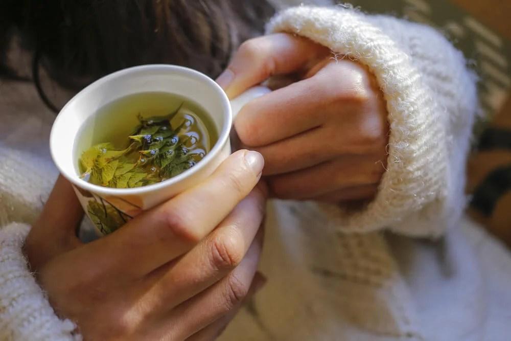 Infusión de té.