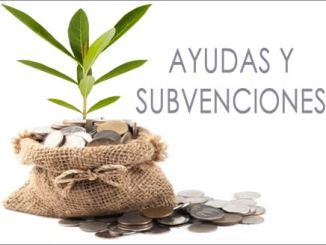 Ayudas y subvenciones
