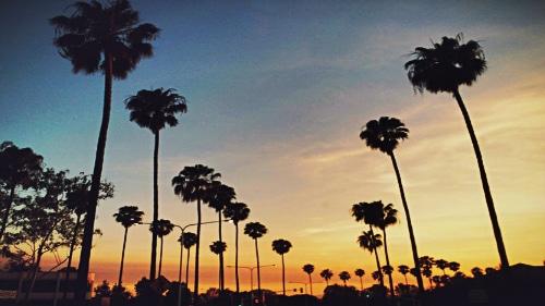 Dónde alojarse en Los Ángeles, California