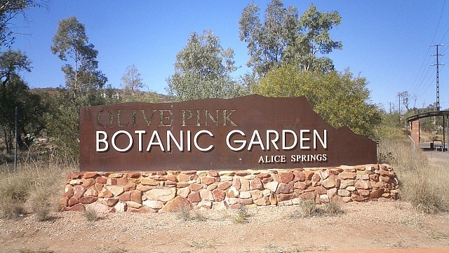 Where to stay in Alice Springs - Desert Springs