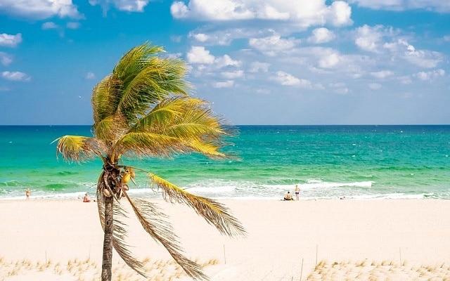 Dónde alojarse en Fort Lauderdale - Fort Lauderdale-by-the-Sea