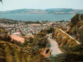 Las mejores zonas donde alojarse en Rotorua, Nueva Zelanda