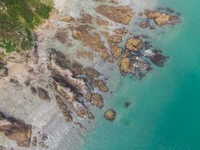 Las mejores zonas donde alojarse en Waiheke, Nueva Zelanda