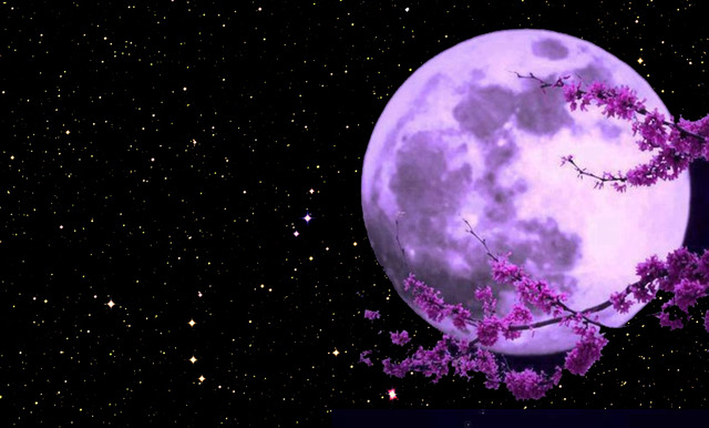 April 39 S Pink Moon Poem By Emile Pinet