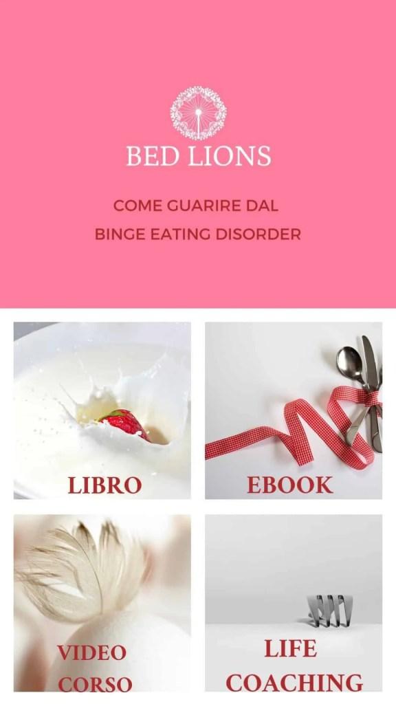 programma-bed-lions