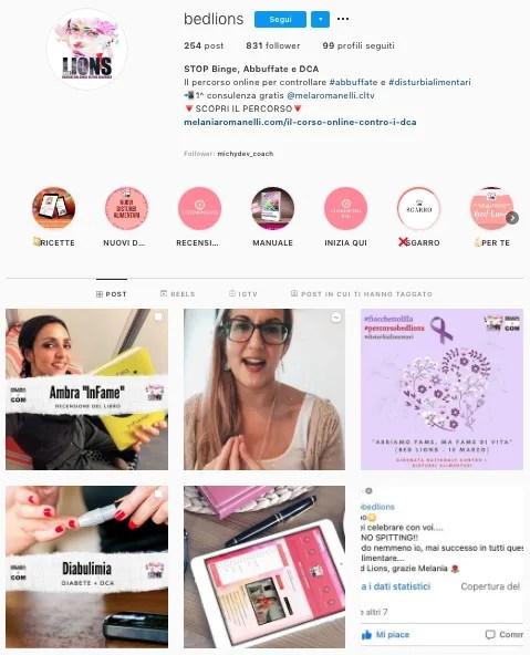 instagram-bedlions