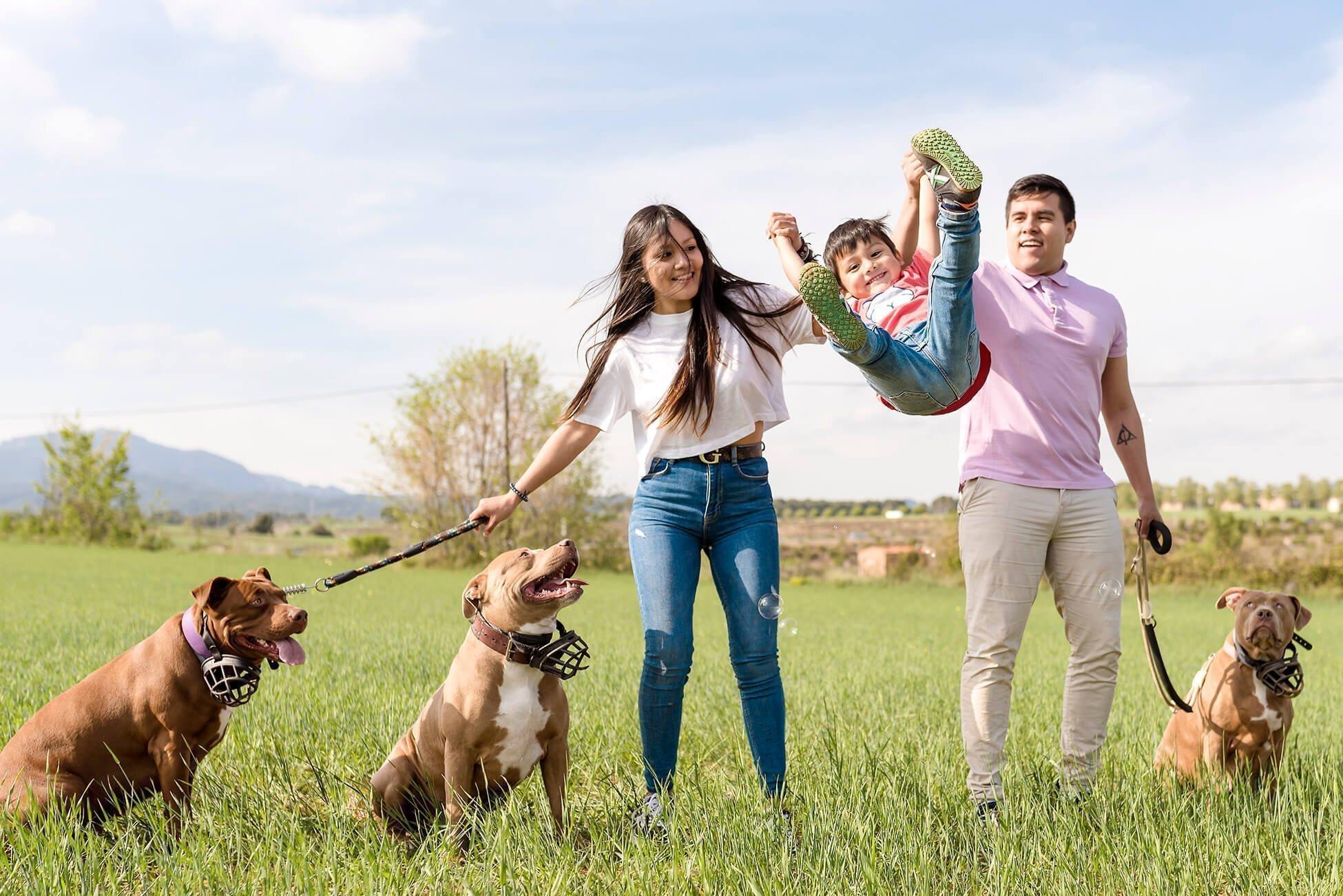 Sesión familia en campo con mascotas