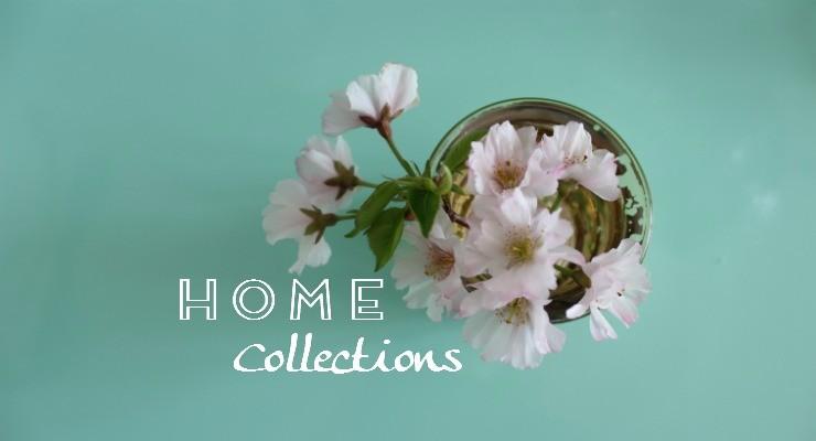 Home slider_740x400_2