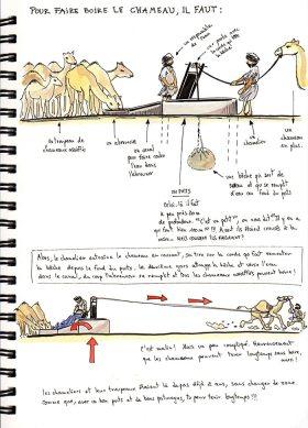 Mauritanie 2014 - Pour faire boire le chameau