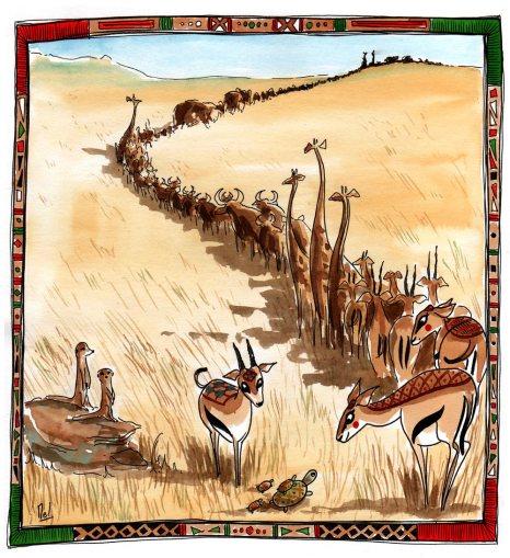 Projet en cours - La traversée des gazelles