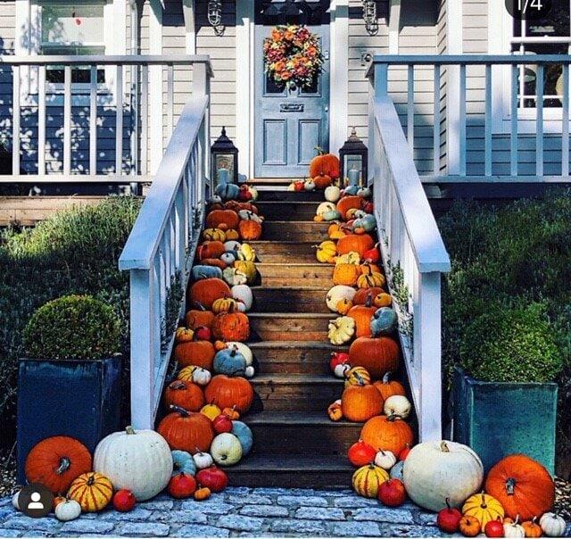 But, I think the award for best effort has to go to Jon Paul Clark for his amazing display of pumpkins all October! Instagram  @jonpaulclark
