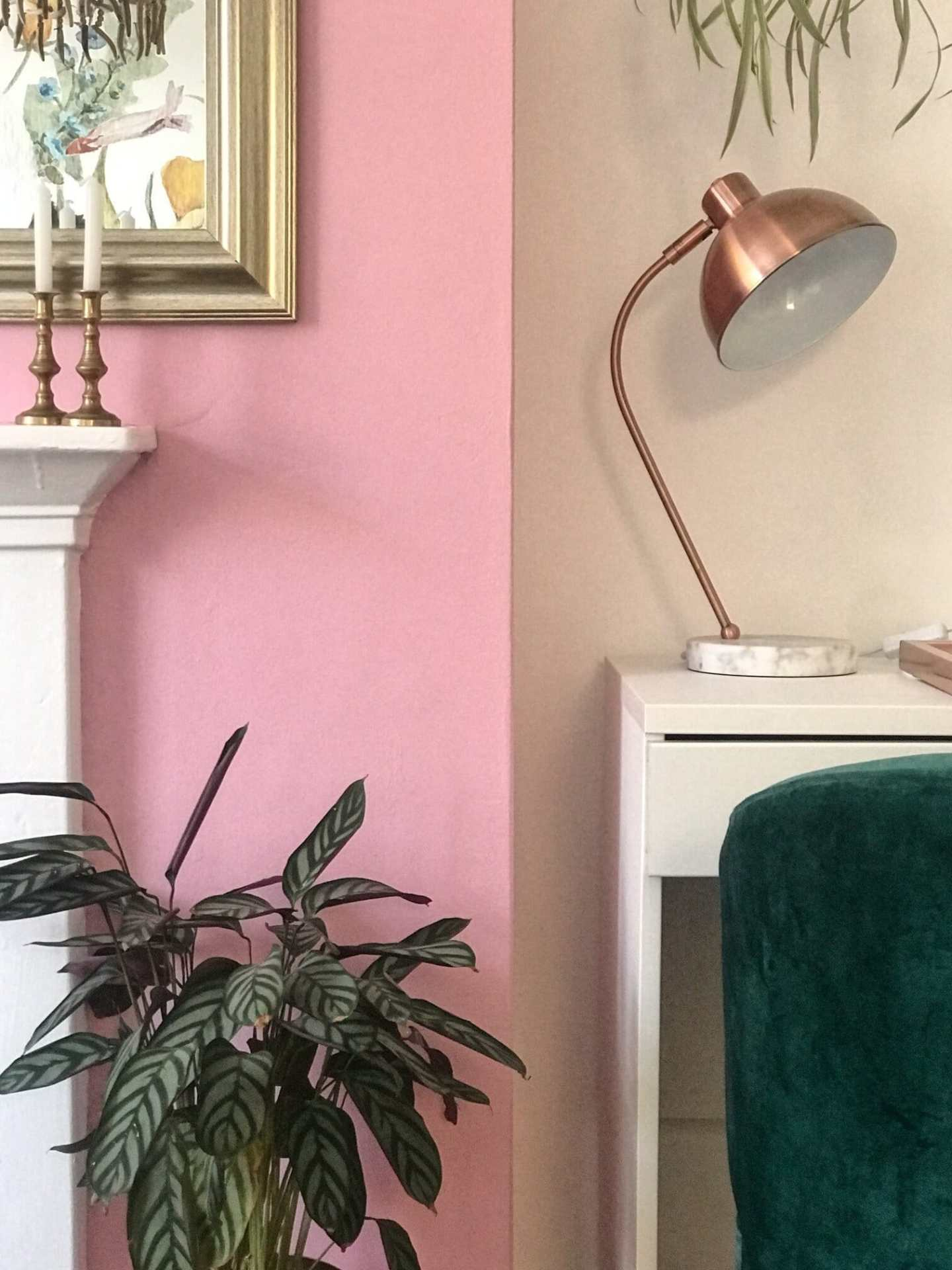 The pink wall makes the greens really stand out