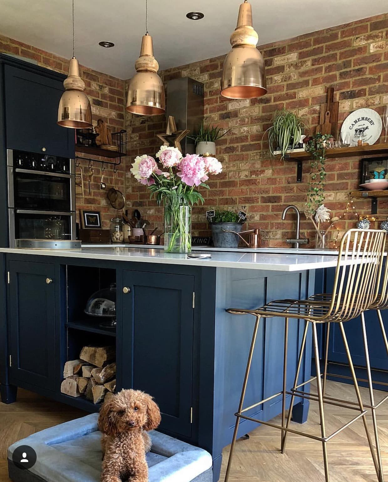 The perfect model for this beautiful kitchen  @renovating_ethelwolf