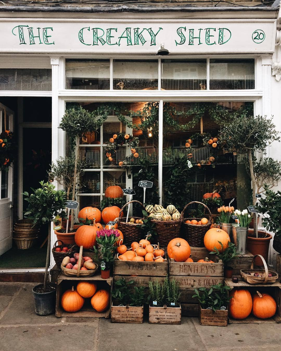autumn decor shop front
