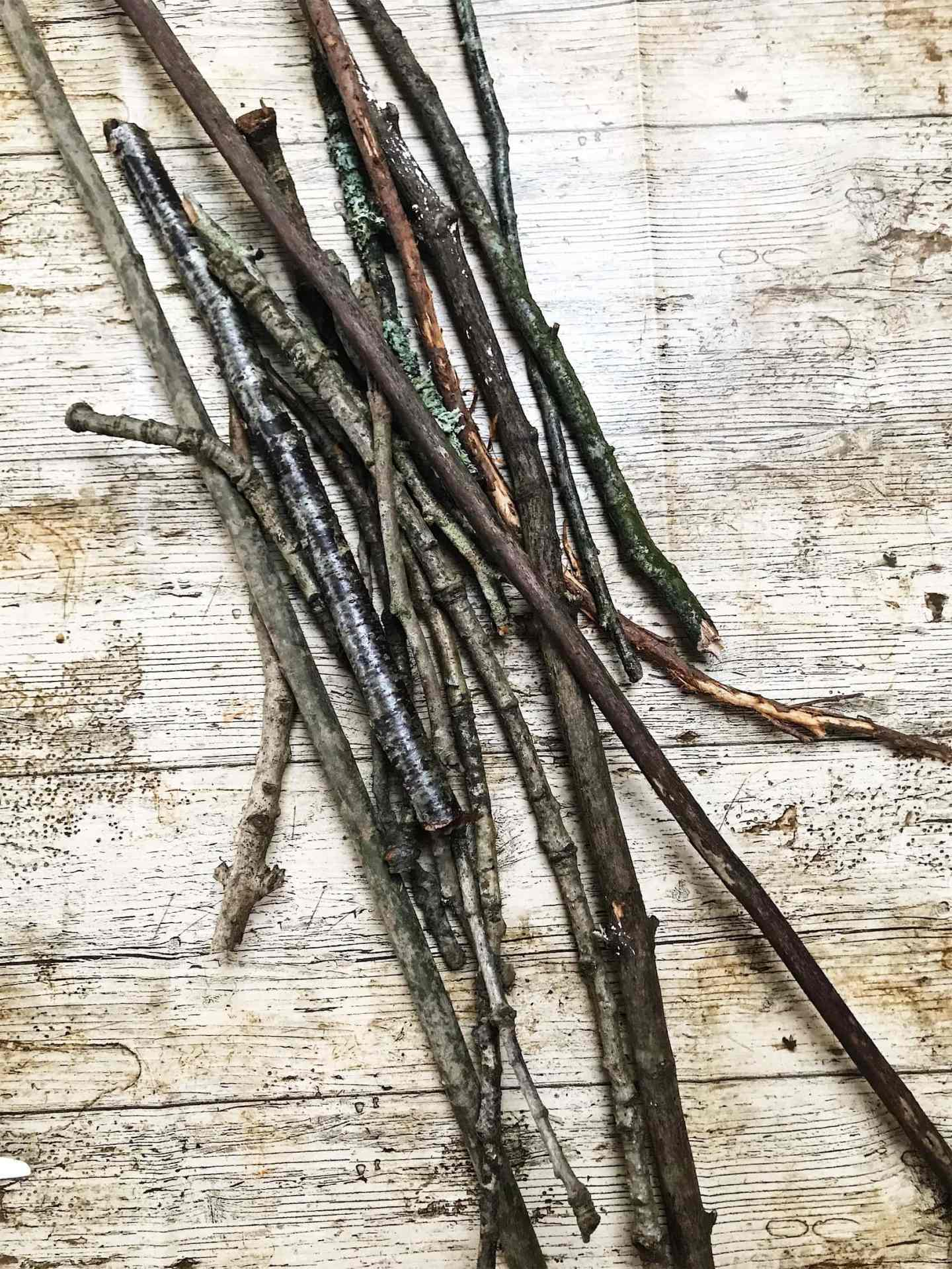 twigs for your christmas twig tree decoration