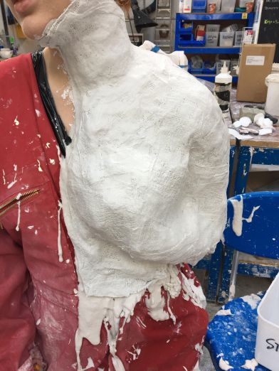 Reinforcing the alginate with layers of modrock