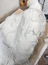 The alginate mold