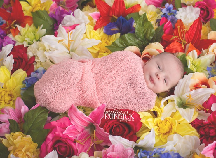 Newborn Portrait Session