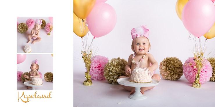 Jonesboro Arkansas Child Photographer Melanie Runsick Photography Smash Cake Session In-studio