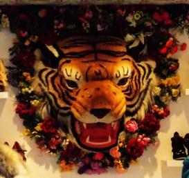 Tiger in Irregular choice shoe shop