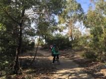 Discovering Westgate Park