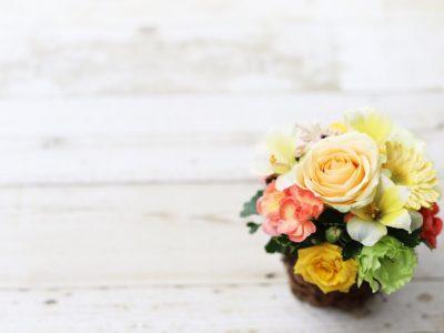 季節によってどんな花が使われるの?茶道の花の投げ入れについて