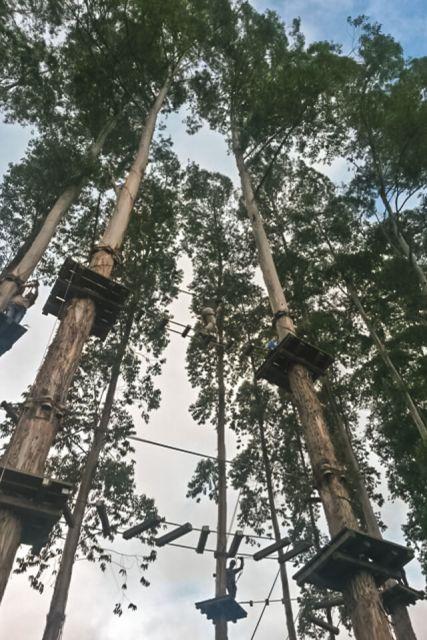 Selva Sassiri, o maior circuito de arvorismo da América Latina