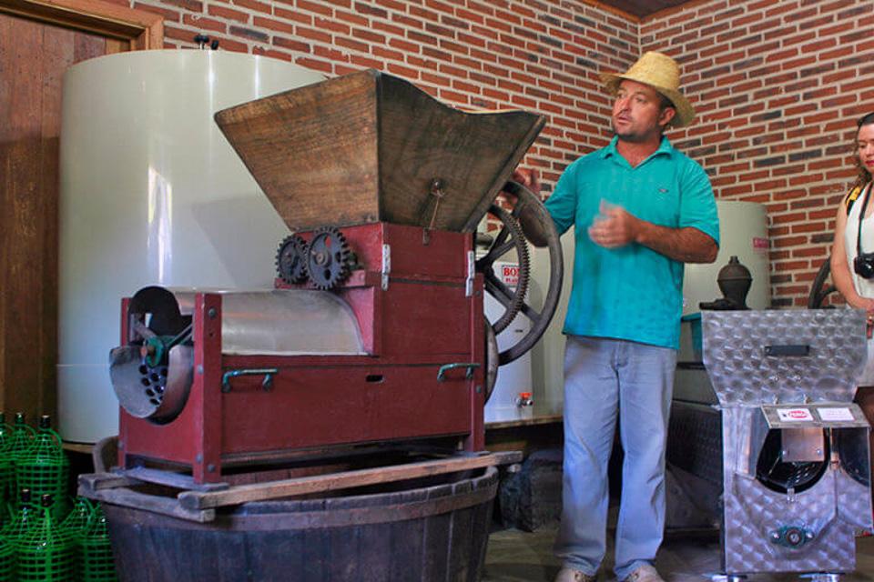 Tour o Quatrilho, um roteiro de agroturismo na Serra Gaúcha produção de vinho