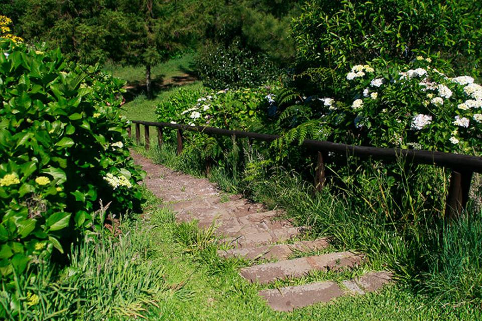 Tour o Quatrilho, um roteiro de agroturismo na Serra Gaúcha natureza