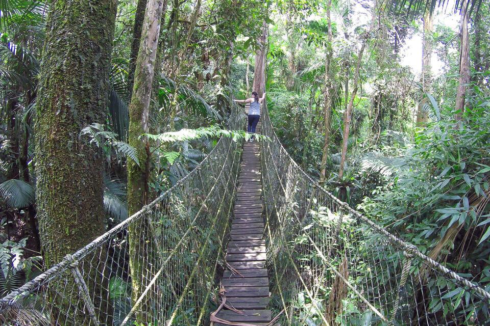 Pura Aventura - passarelas suspensas no Parque das Neblinas