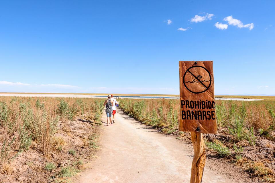 Principais passeios do Atacama Laguna Cejar