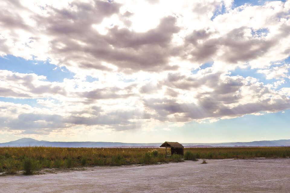 O que fazer em San Pedro de Atacama Laguna Piedras