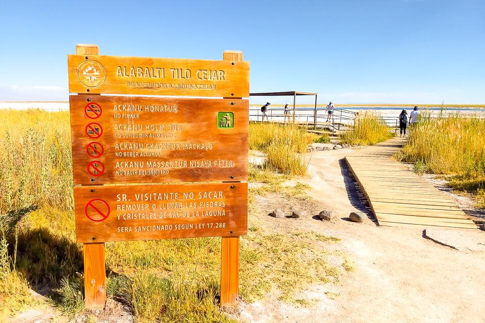 Quais os principais passeios do Atacama Laguna Cejar