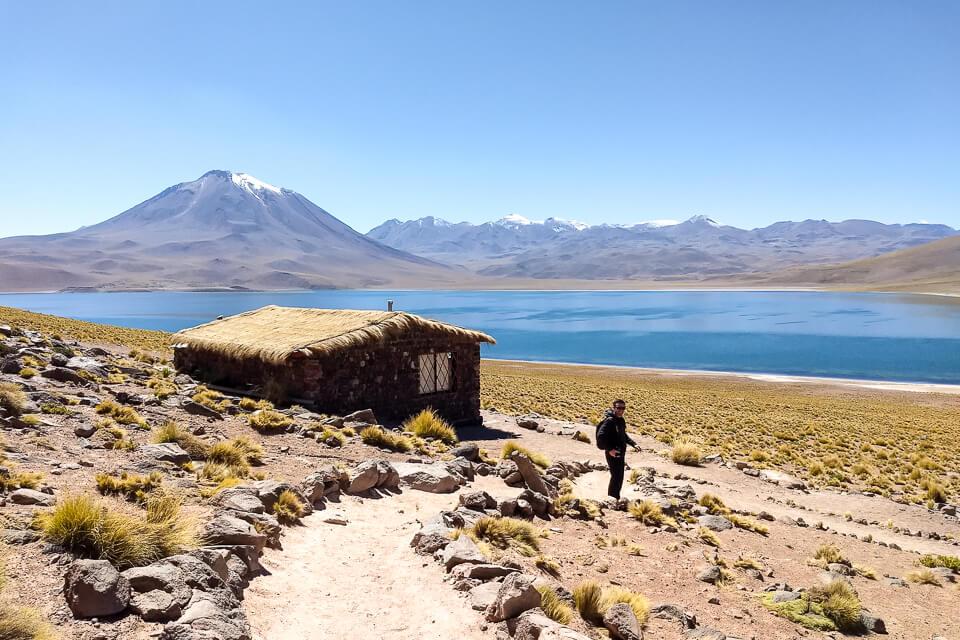 O que fazer no Atacama Lagunas Altiplânicas - Laguna Miscanti