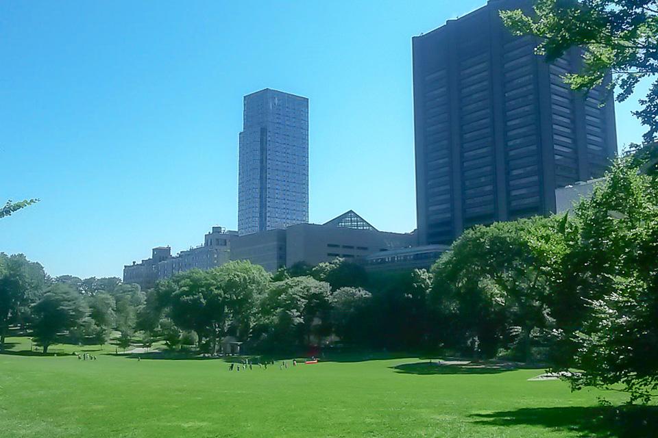 Central Park é um dos principais pontos turísticos de Nova York