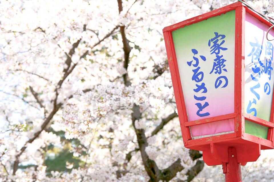 Qual melhor época para visitar o Japão