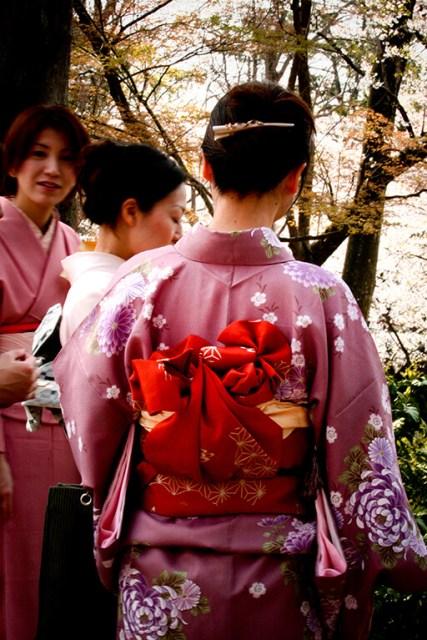 Festival da flor de cerejeira, Sakura Matsuri no Japão e kimono