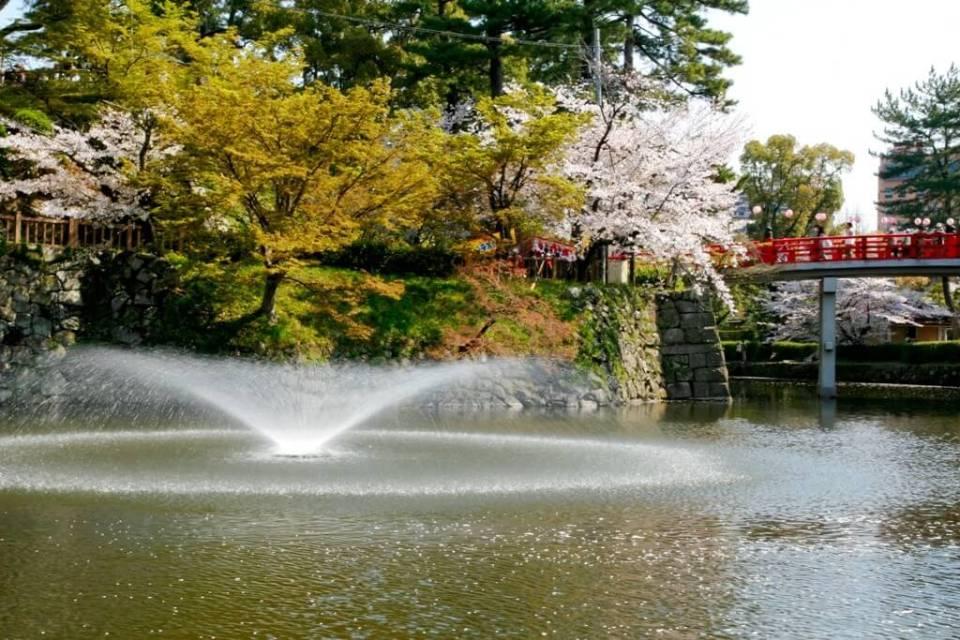 Quando é melhor visitar o Japão