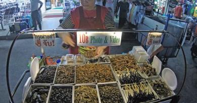 Onde comer insetos na tailandia bangkok