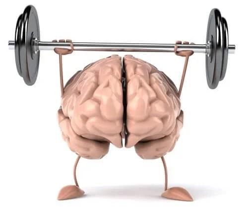 cerebro-forma-500x423-500x423 7 dados que todos os amantes de café deveriam conhecer