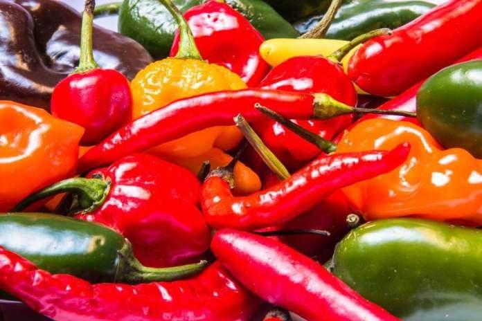 Diferentes tipos de pimenta