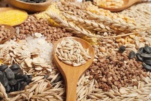 Cereais de grão completo para complementar as dietas