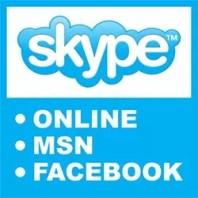 Entrar Skype Online Facebook MSN