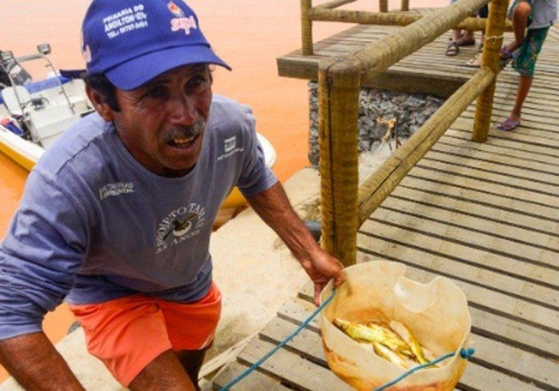 Anoilton Pereira, pescador de Regência, recolhe peixes mortos recolhidos na foz do rio Doce