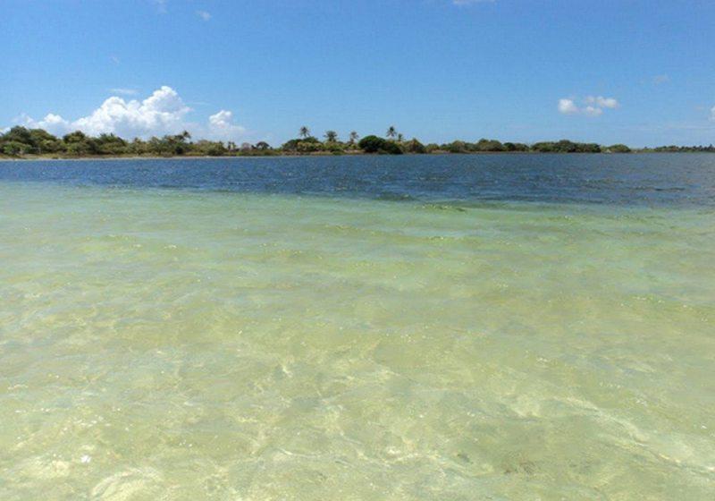 Lagoa do Cotia