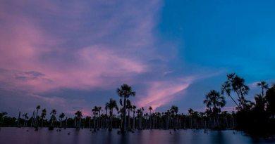 Lagoa Das Araras Nobres