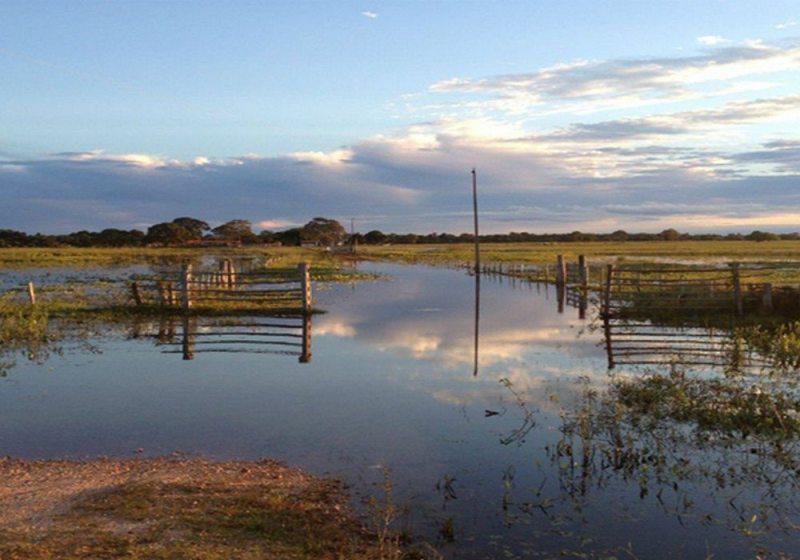Pantanal (MS e MT)