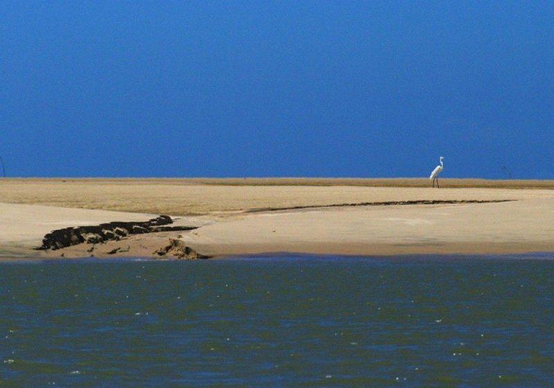 Paisagens Naturais Do Piauí